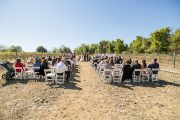 Cava winery wedding ceremony